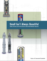 edited 24-page report Small Isn't Always Beautiful: Safety, Security, and Cost Concerns About Small Modular Reactors, September 2013