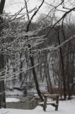 ice and snow in Rocky River Reservation after ice storm Feb 23 2011.JPG